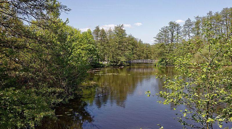 Wilhelmsburger Inselpark, Eingang Kuckuckshorn, Blick auf den See Mahlbusen